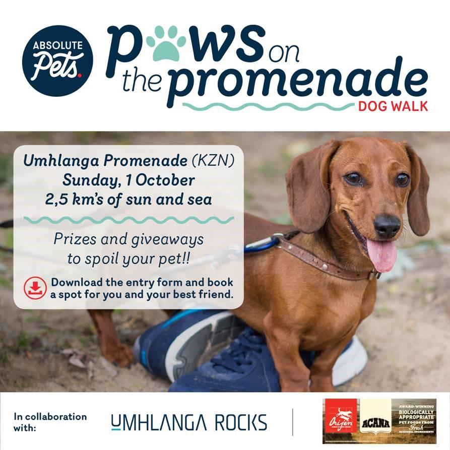 Paws On Promenade – 1st October